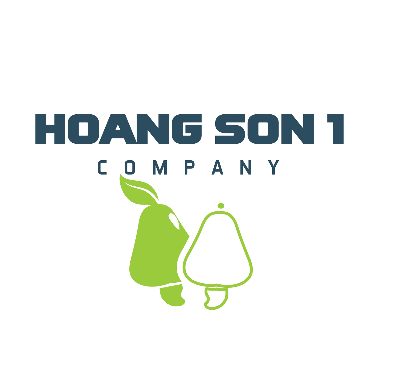 HOANGSON1_2017